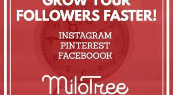 milo tree app sign up